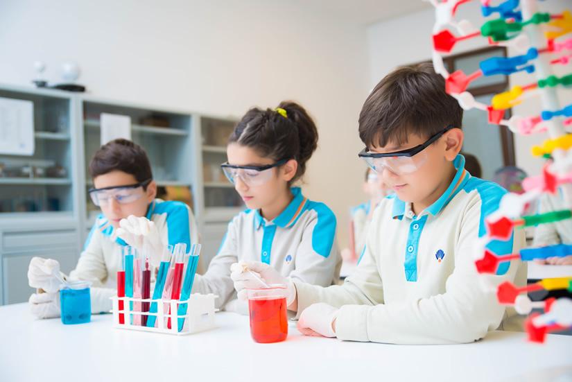 Okyanus Koleji, Laboratuvar Uygulama Sınavı