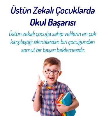 Üstün Zekalı Çocuklarda Okul Başarısı