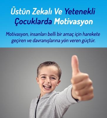 Üstün Zekâlı ve Yetenekli Çocuklarda Motivasyon