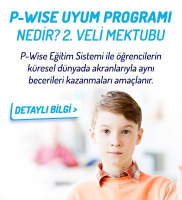 P-Wise Uyum Programı Nedir? 2. Veli Mektubu