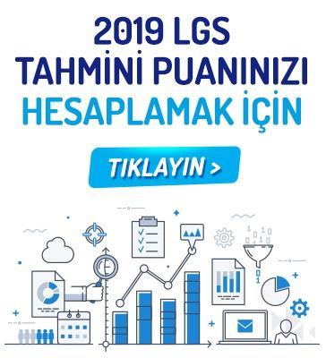 2019 LGS Tahmini Puanınızı Hesaplayın