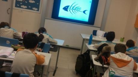 4/C Sınıfı Sosyal Bilgiler Dersinde