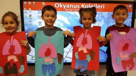Beykent Okyanus Koleji Okul Öncesi Güneş  Grubu Öğrencileri Fen ve Matematik Dersinde