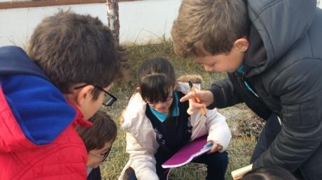 İncek Okyanus Koleji Öğrencileri Canlıları Sınıflandırıyor