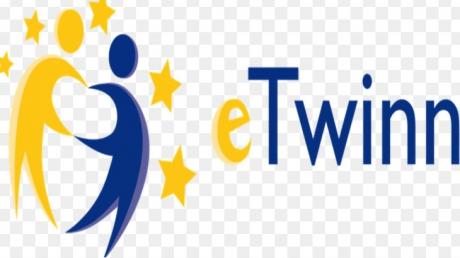 Diyarbakır Okyanus Koleji Öğrencilerinin E-Twinning Başarısı
