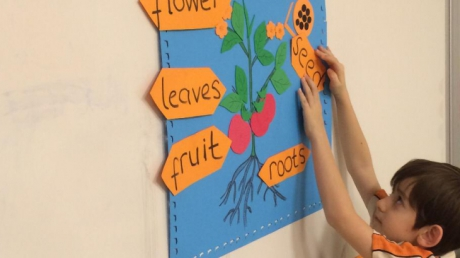 Bahçelievler Okyanus Koleji 2. Sınıf Öğrencileri İngilizce Dersinde