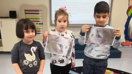 Sancaktepe Okyanus Koleji Okul Öncesi Balıklar Grubu Öğrencileri Türkçe Dil Etkinliğinde